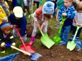 The Morton Arboretum Celebrates Arbor Day with Popular Plant Sale, Events for the Family