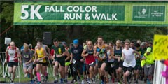 Fall Color 5K Run and Walk