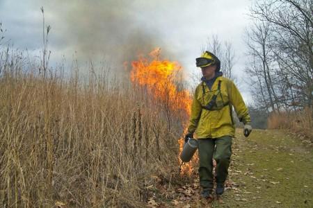Chicago Wilderness Prescription Burn Crew Training (Online)