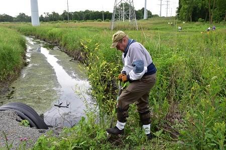 Site Planning for Invasive Species Management (Online)