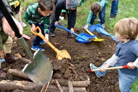 Self-guided Family Play and Exploration: Plant a Tree